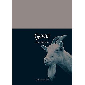 Goat (Animal)