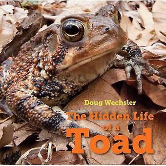 Hidden Life of a Toad by Doug Wechsler - 9781580897389 Book
