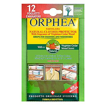 Caraselle 36 Cedar Orphea Moth Repellent Strips for Drawers/Wardrobes