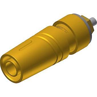 Prise jack de SKS Hirschmann SAB 2640 LK Au Safety Socket, diamètre de l'axe vertical vertical: 4 mm jaune 1 PC (s)