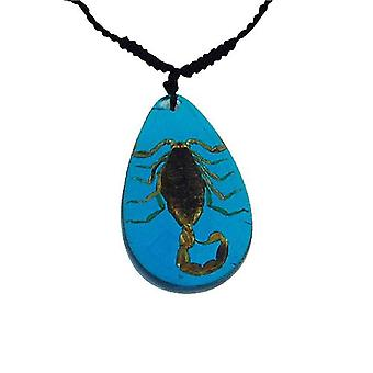The Olivia Collection Bug Necklace with REAL Scorpion Set In Blue Resin Case