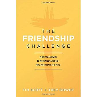 The Friendship Challenge: A � Six-Week Guide to True Reconciliation--One Friendship at a Time