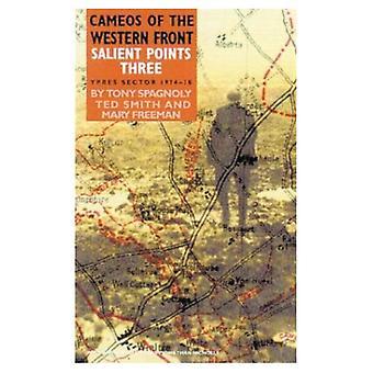 Participações especiais da parte dianteira ocidental: pontos salientes: Sector de Ypres: 1914-1918: 3 (camafeus da frente ocidental)