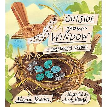 Outside Your Window - A First Book of Nature by Nicola Davies - Mark H