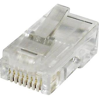 econ connect MPL88R, Pin RJ45 Plug, straight Clear
