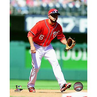 Anthony Rendon 2014 Action Photo Print