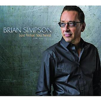 Brian Simpson - Just What You Need [CD] USA import