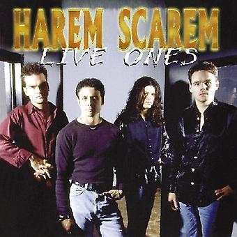 Harem Scarem - Live importazione USA quelli [CD]
