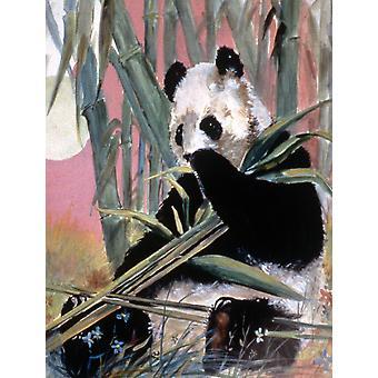 Carolines skatter JMK1190GF giganten Panda flagg hage størrelse