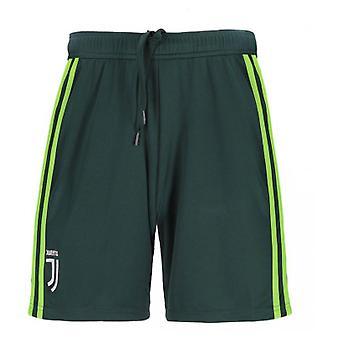 2018-2019 Juventus Adidas Home Goalkeeper Shorts (Green)