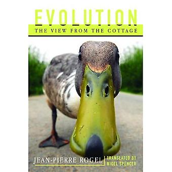 Evolution: The View from the Cottage