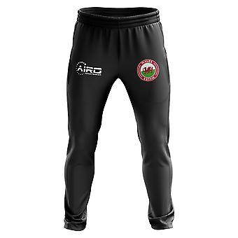 Wales Concept Football Training Pants (Black)
