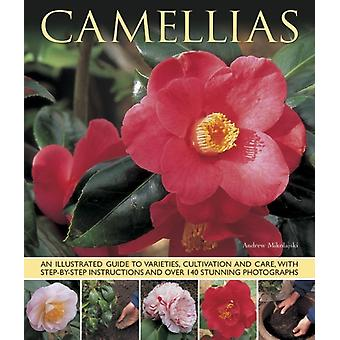 Camellias: An Illustrated Guide to Varieties Cultivation and Care with Step-by-step Instructions and Over 140 Stunning Photographs (Paperback) by Mikolajskj Andrew