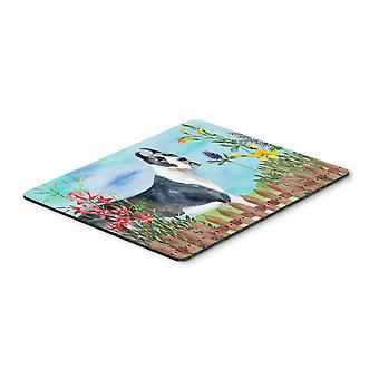 Harlequin Great Dane Spring Mouse Pad, Hot Pad or Trivet