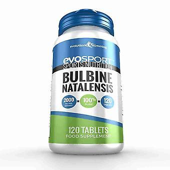 EvoSport Pure Bulbine Natalensis 2000mg - 120 Tablets - Sports Nutrition - Evolution Slimming