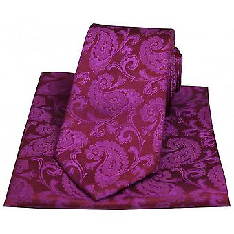 David Van Hagen Paisley Tie tkaniny i placu kieszeni zestaw - głęboki kolor fuksji