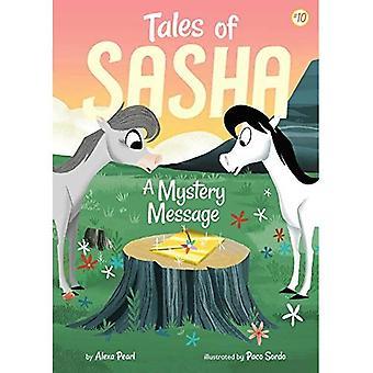 Tales of Sasha: A Mystery Message (Tales of Sasha)