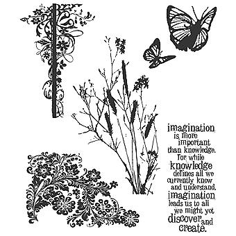 Tim Holtz Cling Rubber Stamp Set Nature's Discovery Cms 049