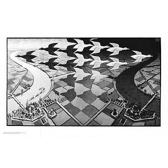 Tag und Nacht Poster Print von MC Escher (34 x 22)