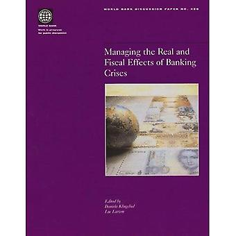 Managing the Real and Fiscal Effects of Banking Crises