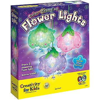 Color Changing Flower Lights Kit 1280000