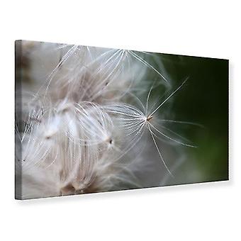 Lærred Udskriv tæt op blomster fibre