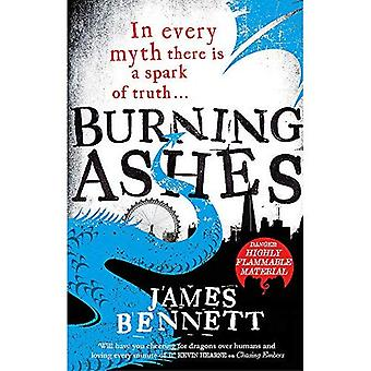 Burning Ashes: A Ben Garston Novel