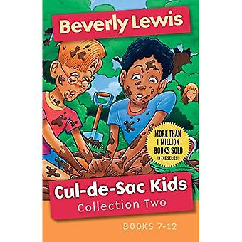 Cul-De-Sac Kids Collection Two: Books 7-12 (Cul-de-Sac� Kids)