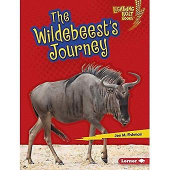 Viaggio di Wildebeest