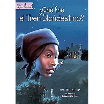 Que Fue El Tren Clandestino? (Quien Fue? / Who Was?)