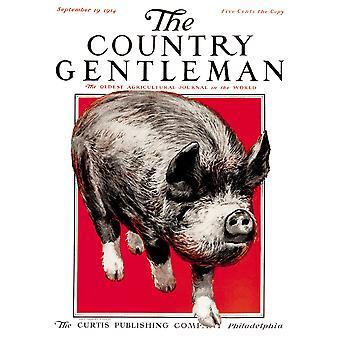 20 世紀初頭 PosterPrint からカントリー ・ ジェントルマン農業雑誌の表紙