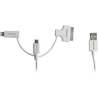 Hähnel Fototechnik USB / Micro-USB / Lightning / 30-Pin 10006510 Charging cable