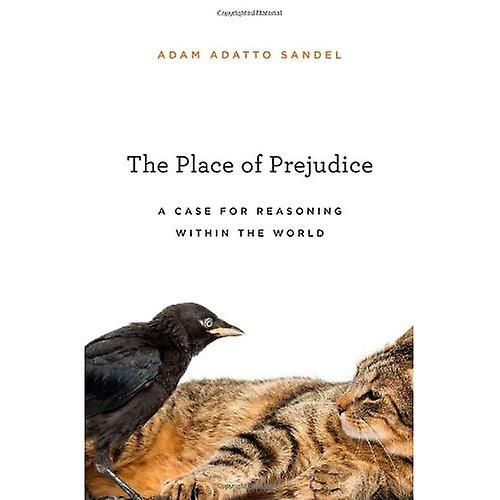 The Place of Prejudice  A Case for Reasoning Within the World