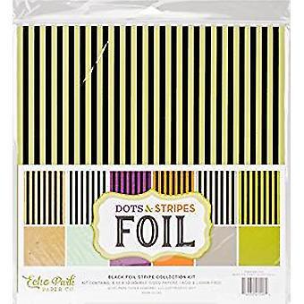 Echo Park Paper Company Dots & Stripes Black Foil Stripe 12x12 Inch Collection Kit (DSF17046)