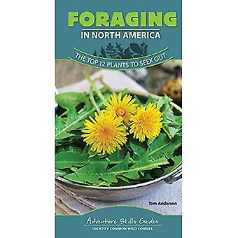 Foraging in North America: The Top 12 Plants to Seek� Out (Adventure Skills Guides)