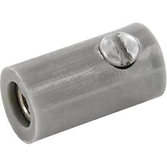 Jack socket Connector, straight Pin diameter: 2.6 mm Grey econ connect HOKGR 1 pc(s)