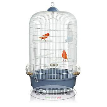 Moon Trixder cage birds (birds, cages and aviaries)