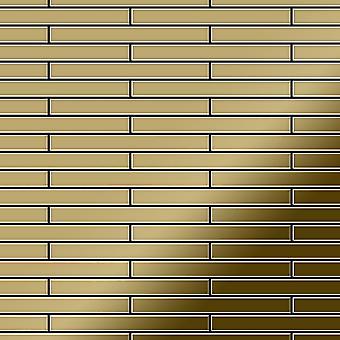 Metal mosaic Titanium ALLOY Deedee-Ti-GM