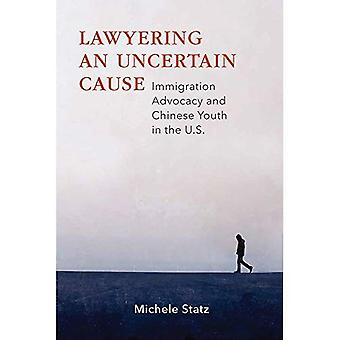 Lawyering an Uncertain Cause: Immigration Advocacy and Chinese Youth in the U.S.