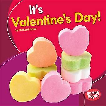 It's Valentine's Day! by Richard Sebra - 9781512425628 Book