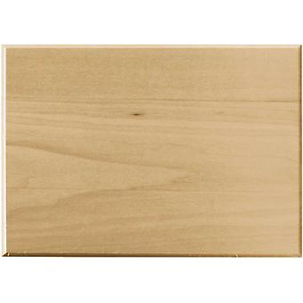 Basswood Rectangle Thin Plaque 5
