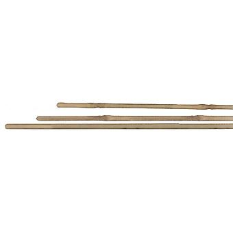 Altadex From 3 Deck Bamboo Stakes (16/18 Mm.)