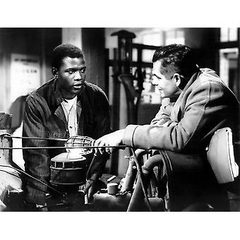 The Blackboard Jungle Sidney Poitier Glenn Ford 1955 Photo Print
