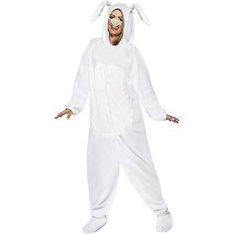 Rabbit Costume, petto 38