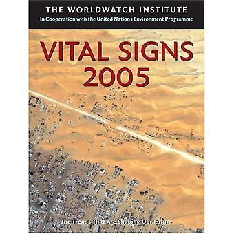 Vital Signs 2005 (Vital Signs: de ecologische Trends die zijn het vormgeven van onze toekomst (Paperback))