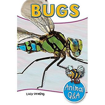 Bugs (Animal Q & A)