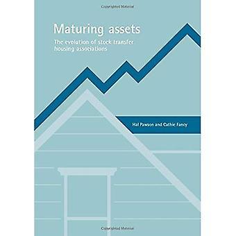 Maturing Assets: The Evolution of Stock Transfer Housing Associations