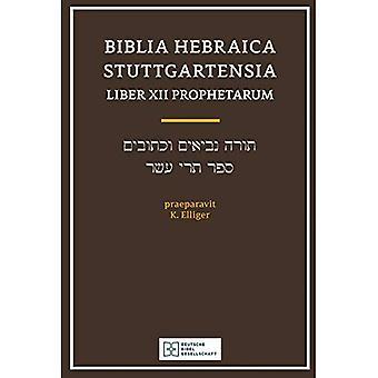 Biblia Hebraica Stuttgartensia Liber Xii Prophetarium