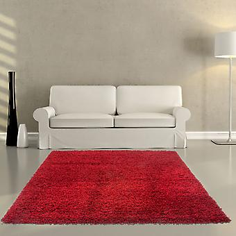 Rugs -Salsa 310 - Red