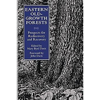Eastern Old Growth Forests (2nd) by Mary B. Davis - 9781559634090 Book